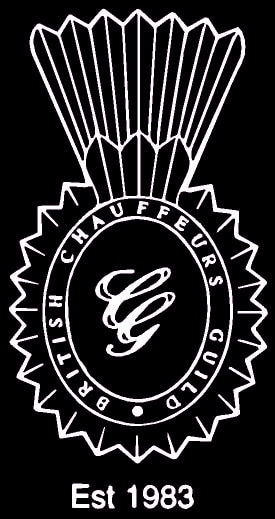 3 BCG Logo rev copy